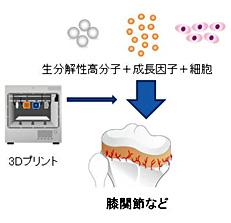 再生組織イメージ図