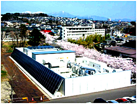 Sight of the Microgrid
