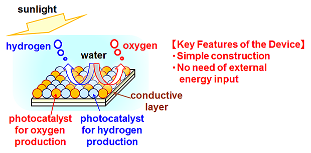 figure: A conceptual diagram of the water splitting process on the surface of the particulate photocatalyst sheets