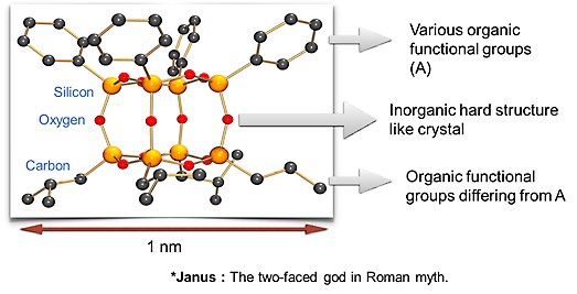 Fig. The molecular structure of Janus cube.