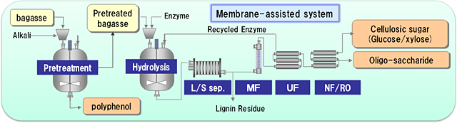 picture:The process flow for the production of useful substances (cellulosic sugar (glucose/xylose), oligo-saccharide, and polyphenol) from bagasse