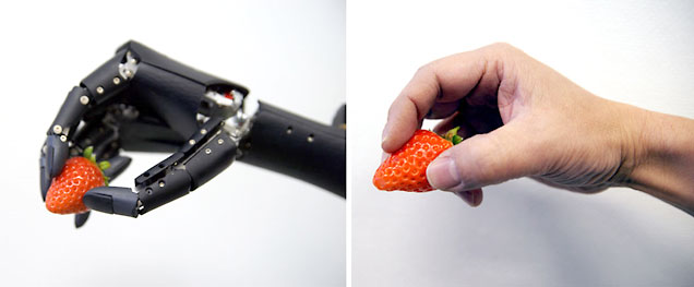 ロボットハンド「F-hand」と人間の手の比較画像