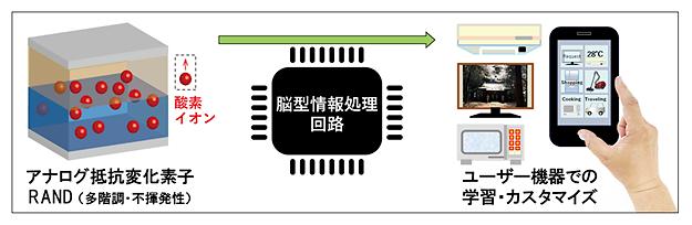アナログ抵抗変化素子用いたAI半導体向けの脳型情報処理回路イメージ図