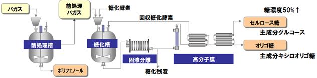 バガスから有用物質(セルロース糖やオリゴ糖、ポリフェノール)を製造する工程フロー図