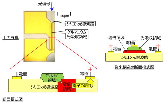 今回開発したフォトダイオードの上面写真、断面模式図(左)、従来構造の断面模式図(右)