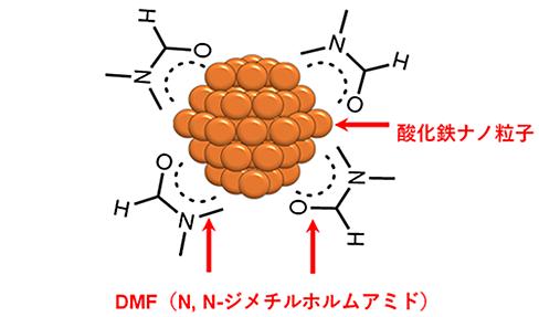 DMF保護による酸化鉄ナノ粒子のイメージ図