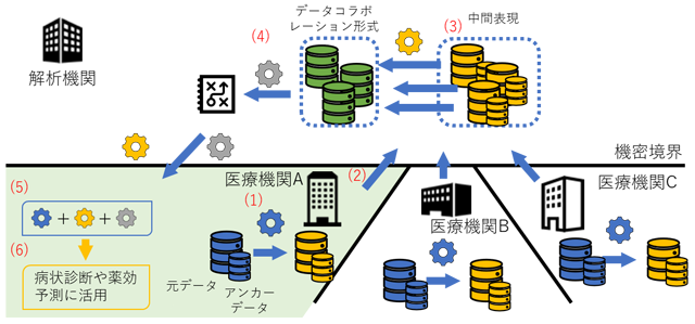 複数の医療機関によるデータコラボレーション解析の手順例