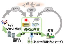 微細藻類カーボンリサイクル技術イメージ