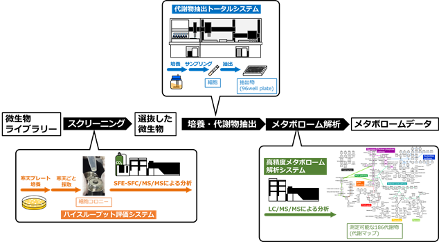 メタボローム解析システムの概要の図