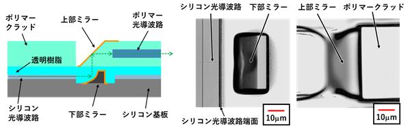 今回開発した3次元マイクロミラーの画像